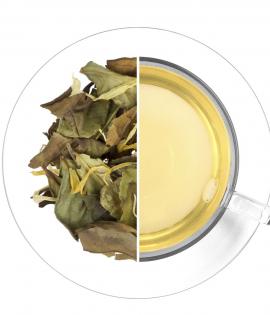 Ananász- Kiwi Fehér tea termék képe