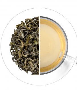 Assam Green Tea OP