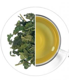 Csalán méregtelenítő zöld tea