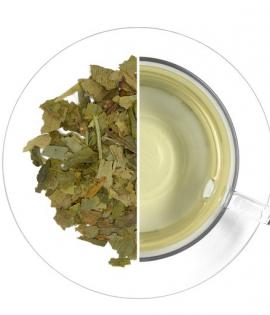 Ginkgo memóriajavító tea