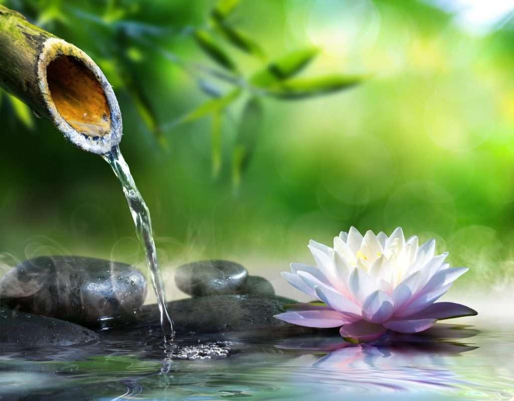 viz szokokut folyasa zen kertben