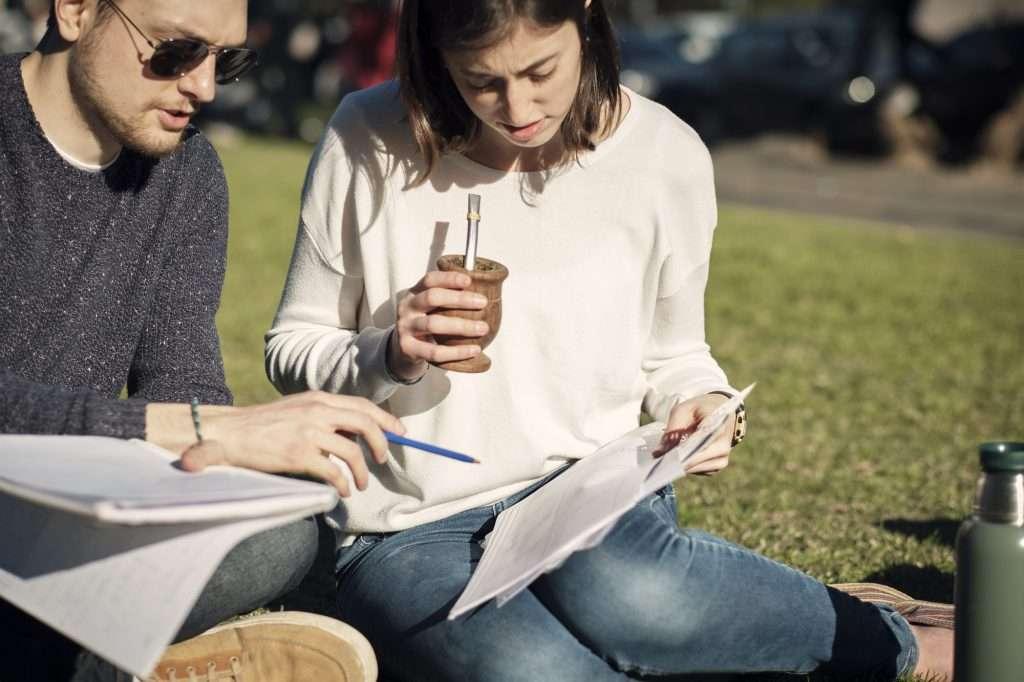 Mate tea és ginkgo biloba segít a tanulásban a fiataloknak is