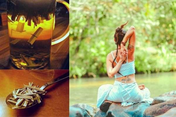 citromfu stresszoldo tea